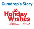 Petco-holiday-wishes-gumdrop-Feature