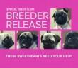 breeder-release_feature2