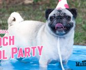 7th Annual Pooch Pool Party – July 16th