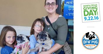 Why We Give: Happy Tails