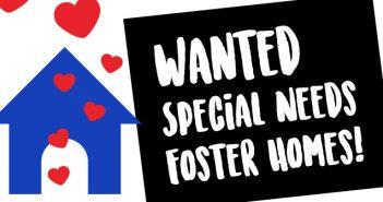 FosterPlea-Feature
