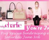 Charming Charlie Fundraiser – June 3rd
