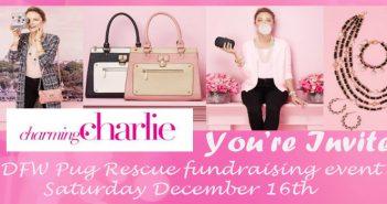 Charming Charlie Fundraiser – December 16th