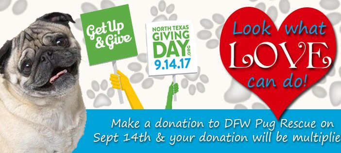 North Texas Giving Day – Sept 14th 2017
