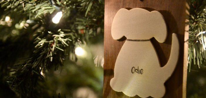 Odie & Board Ornaments