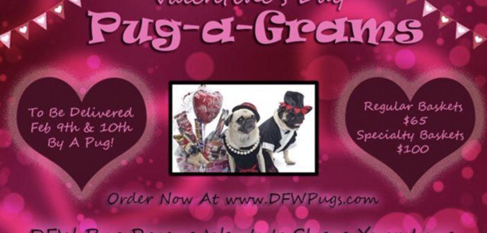 Pug-a-Grams: On Sale Now!
