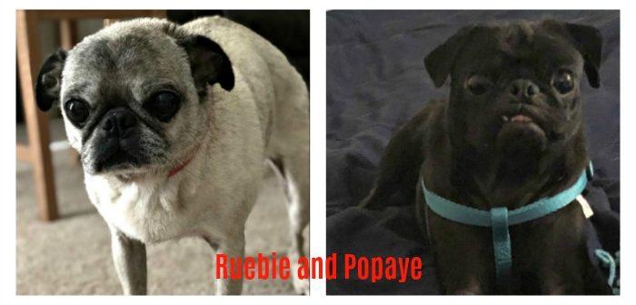 Ruebie (12 YO) and Popaye (4 YO)