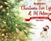 Christmas Tree Lighting & Pet Palooza – 12.1.18